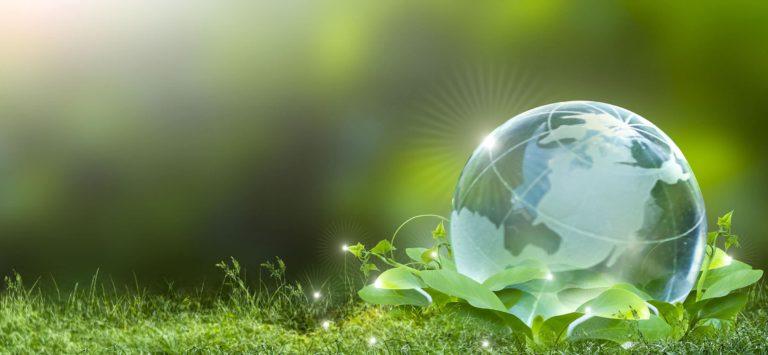 Sustainability Advisory Services