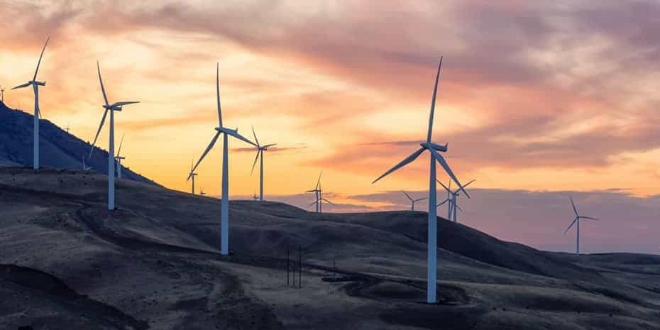 Climate change policy (image of wind turbines)